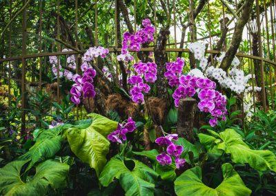 Singapur Reise | Reisebüro Hückelhoven