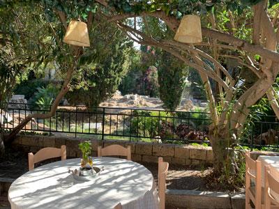 Gemütliches Mittagessen unter schattenspenden Bäumen mit Blick auf die antike Ausgrabungsstätte Agora, mitten in Kos Stadt